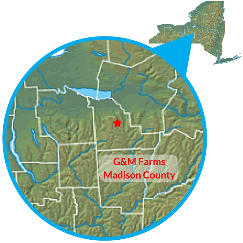 G&M Farms Map